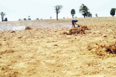 We Started Late This Year- Katsina Farmers